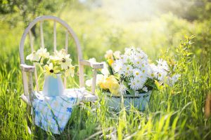 summer-still-life-779386_640